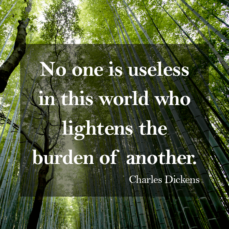 charles dickens carrying a burden of Funny burden quotes - funny quotes about burdens  - charles dickens humanity has the stars in its future, and that future is too important to be lost under the.