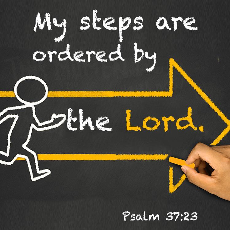 steps-ordered