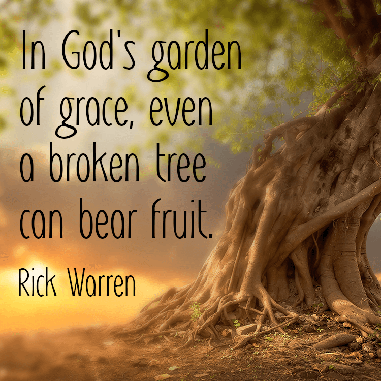 garden-of-grace