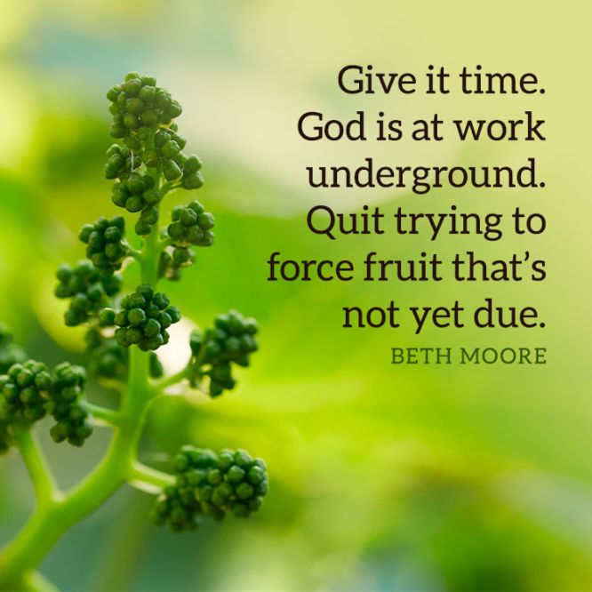 Give it time. God is at work underground...