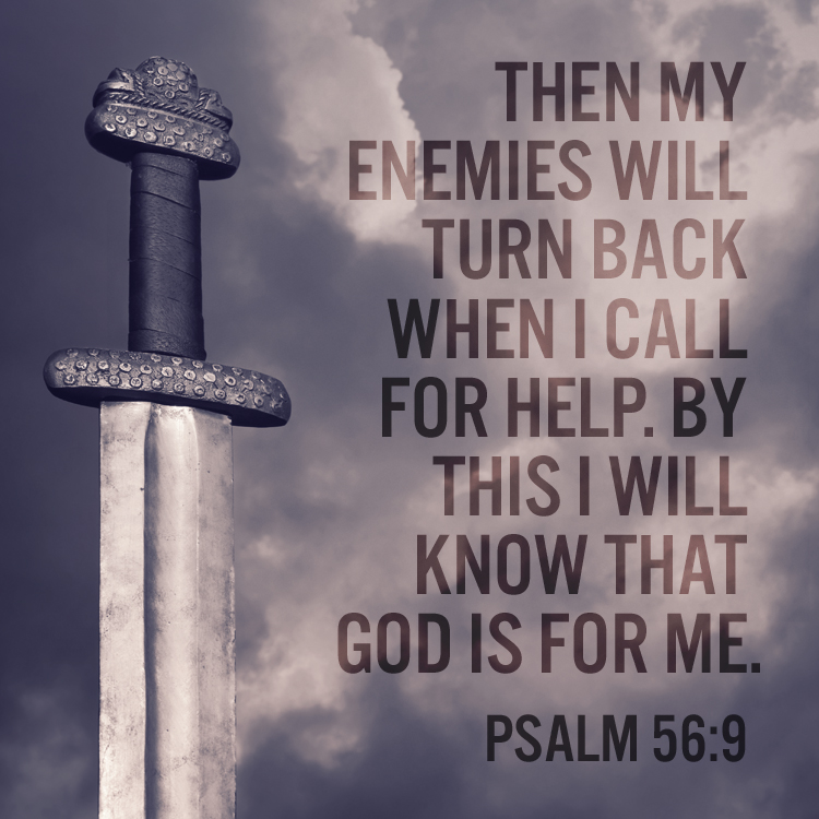 Image result for psalm 56:9