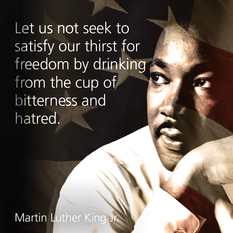 Martin Luther King Quotes Inspirational Motivation: Let Us Not Seek To Satisfy Our Thirst For Freedom With Hatred